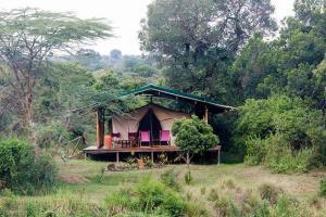 Little Governors Camp - Cheetah Revolution Safaris