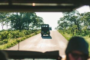 Safari Underway