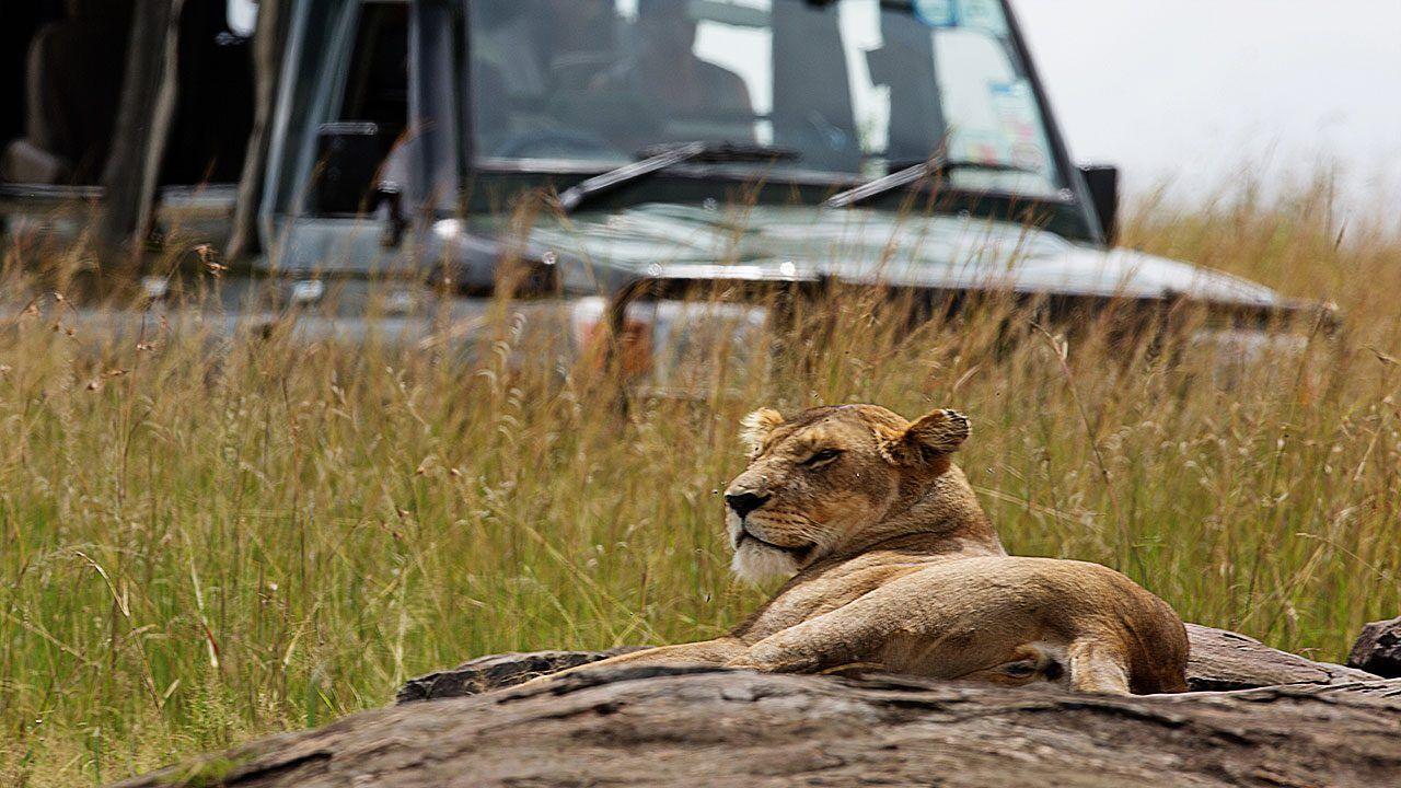 SkySafari Kenya Classic Safari by Elewana