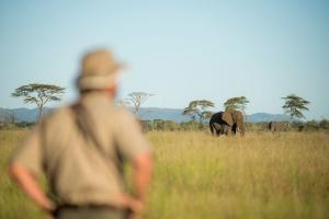 africa safari holidays