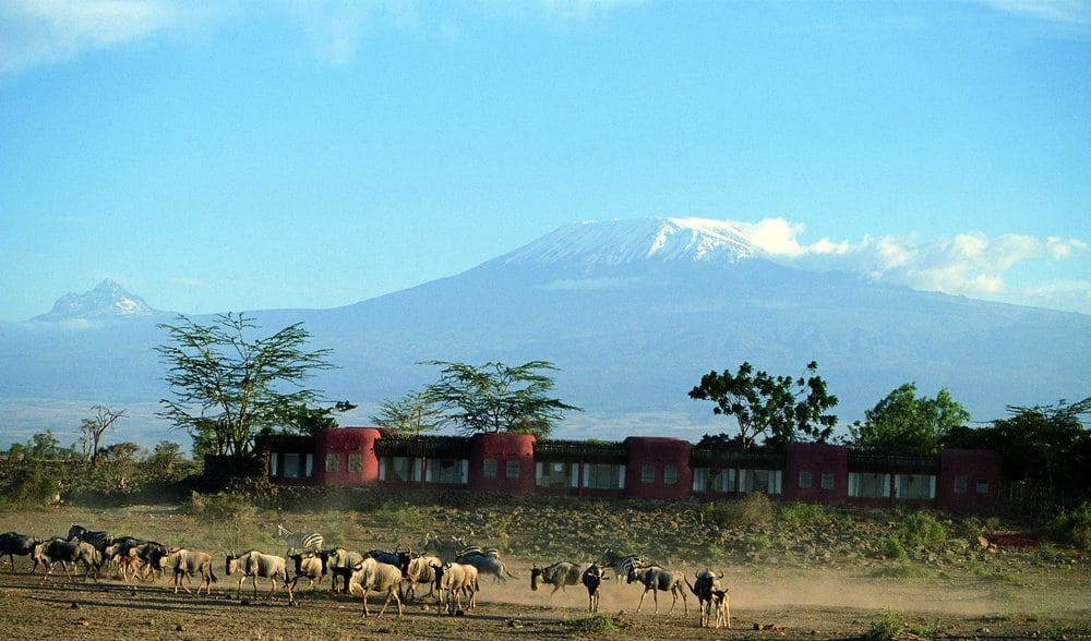 Accomodation Amboseli Serena Lodge Safari