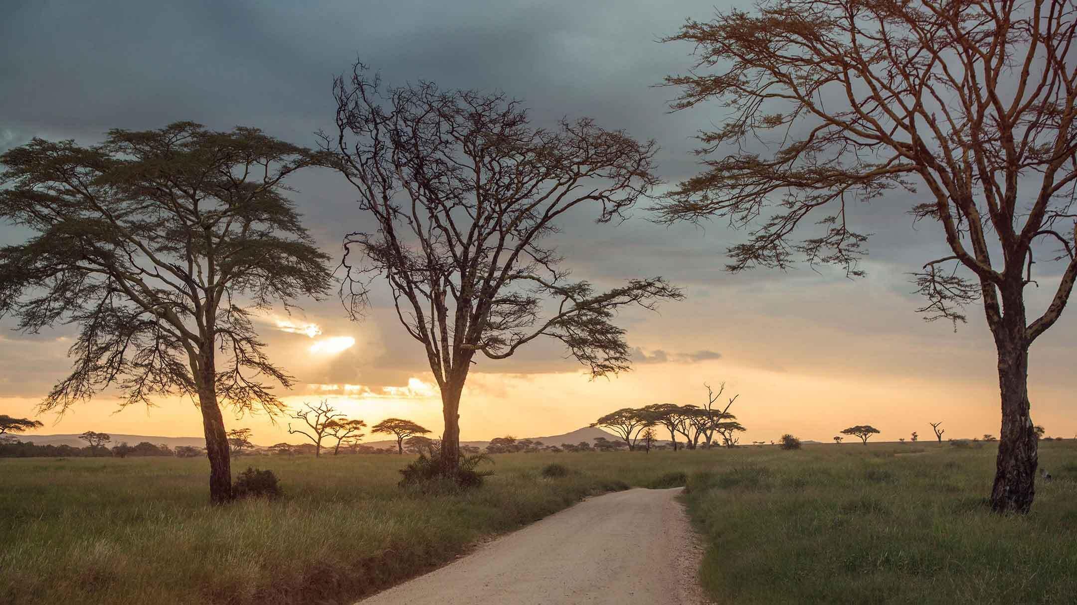 private safaris in kenya