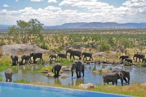 Serena Lodge In Serengeti National Park