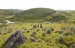 Walking The Highlands