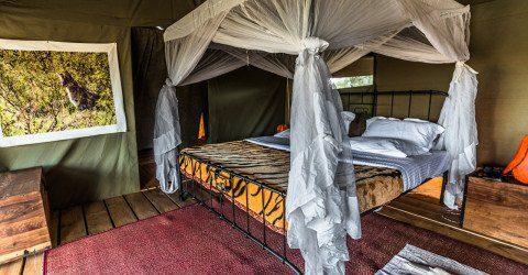 Angata Camp In Tarangire National Park