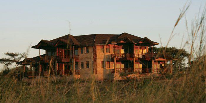 Simba Lodge