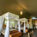Kibo Safari Luxury Camp