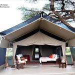 Zebra Plains Amboseli Camp