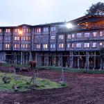 Treetops Lodge AberdaresNational Park - Cheetah Safaris