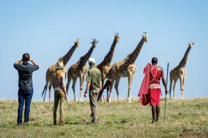 Copy-of-Copy-of-Copy-of-Masai-Mara-2017-02-50e