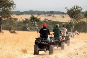 Quad Bike Game Drives in Africa - Cheetah Safaris